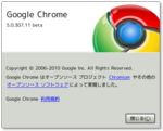 Google_Chrome_ver5_0_307_11.png